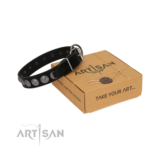 Rust-proof buckle on full grain leather dog collar for everyday walking your doggie