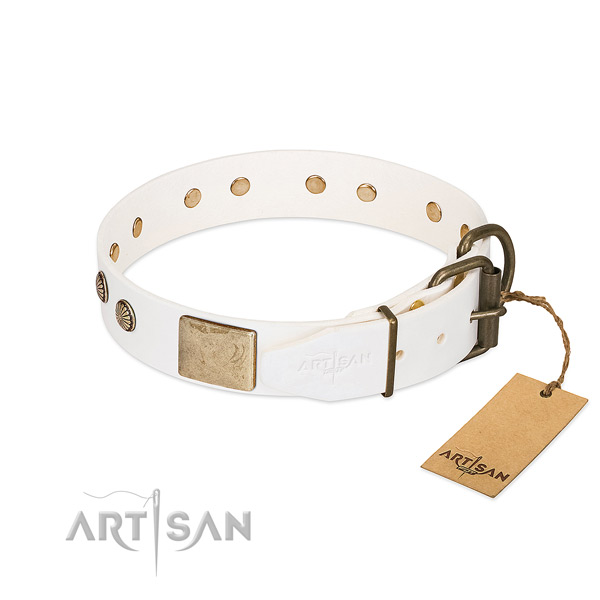 Rust resistant hardware on comfortable wearing dog collar
