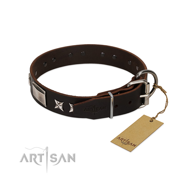 Stylish collar of natural leather for your stylish pet