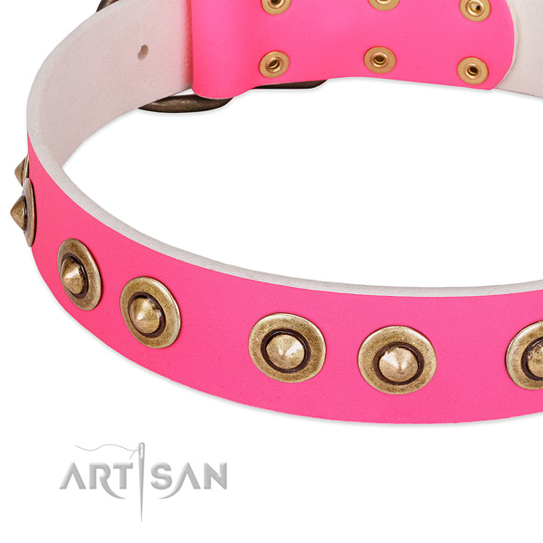 Corrosion resistant embellishments on full grain natural leather dog collar for your pet