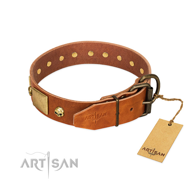 Top notch natural leather dog collar with corrosion proof studs