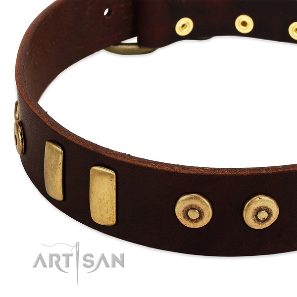 Top notch full grain genuine leather collar with exceptional decorations for your dog