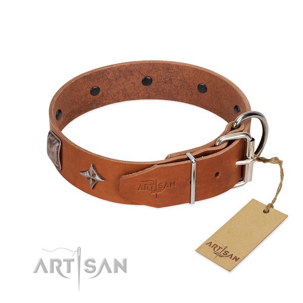 Soft to touch full grain natural leather dog collar with stunning studs