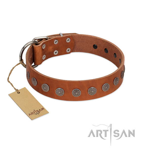 Exceptional adornments on natural leather collar for handy use your dog