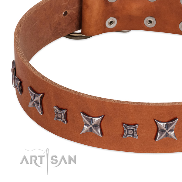 Trendy full grain leather collar for your beautiful four-legged friend