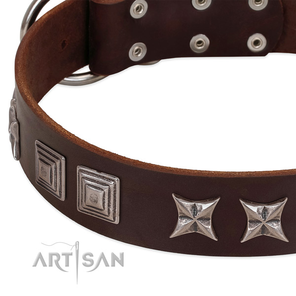 Daily use genuine leather dog collar with designer studs