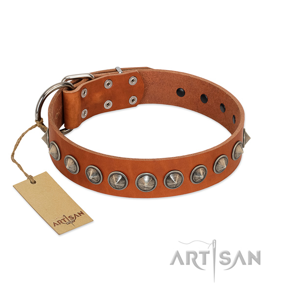 Natural leather dog collar with unusual studs handcrafted pet