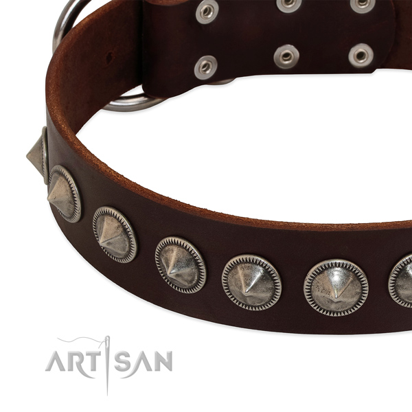 Comfortable wearing studded full grain natural leather collar for your doggie