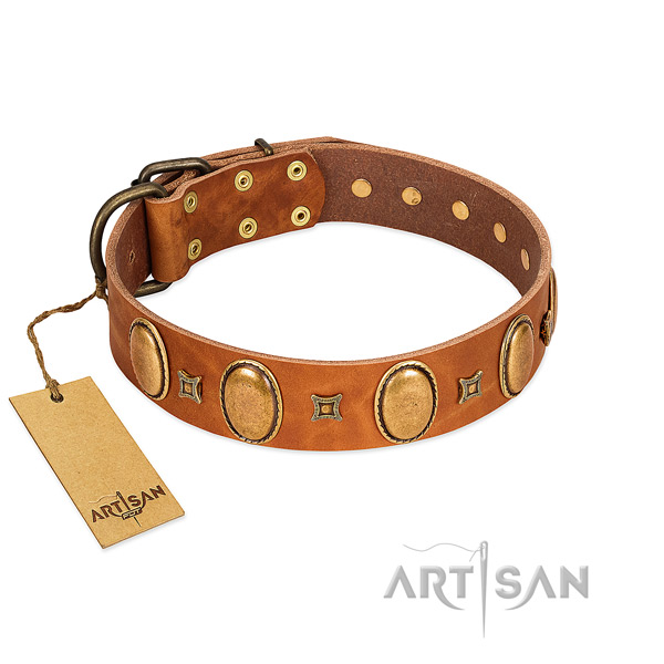 Genuine leather dog collar with stunning adornments for daily walking