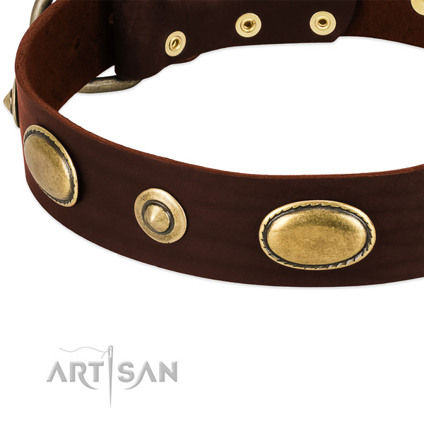 Strong adornments on full grain genuine leather dog collar for your doggie