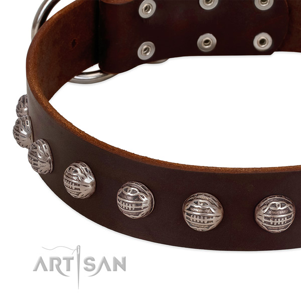 Full grain natural leather collar with top notch adornments for your doggie