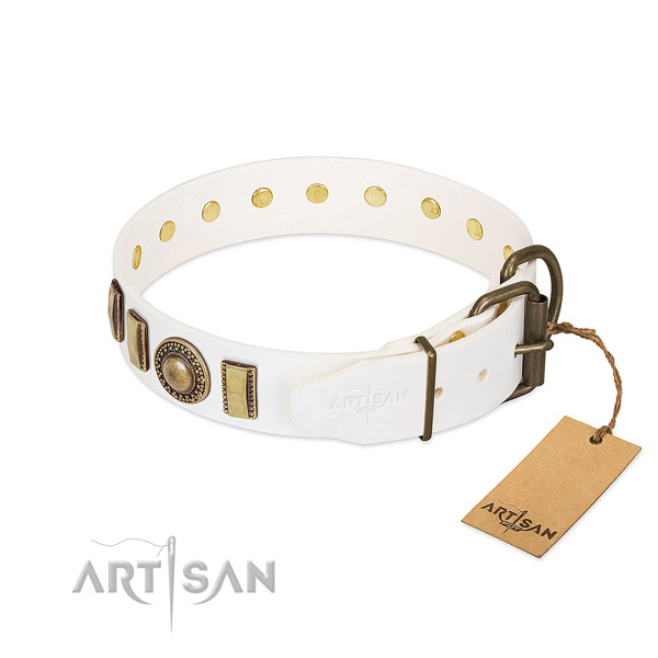 Easy adjustable leather dog collar with corrosion proof fittings