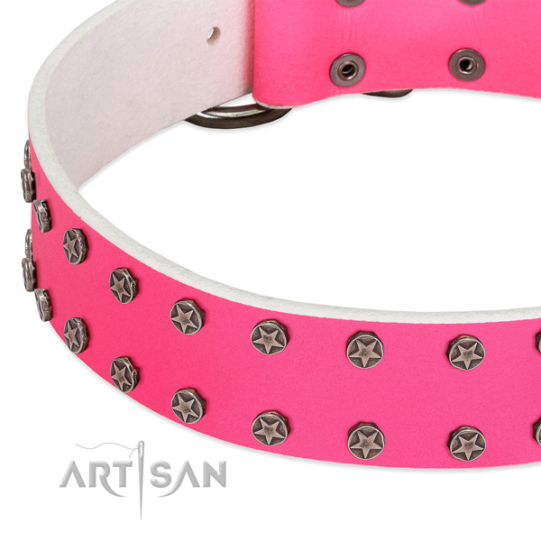 Best quality leather dog collar with decorations for your doggie