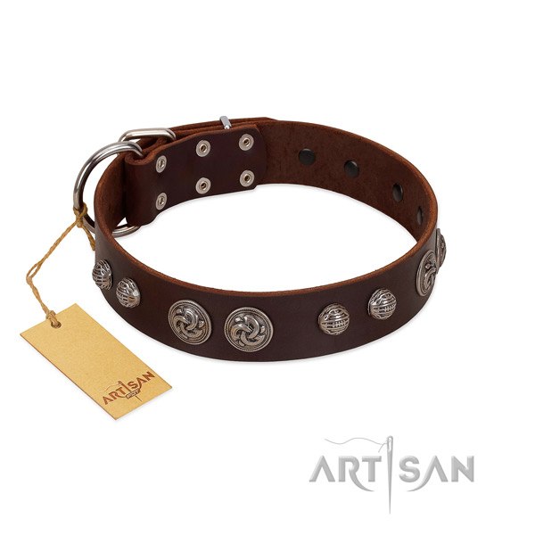 Fashionable genuine leather dog collar for basic training