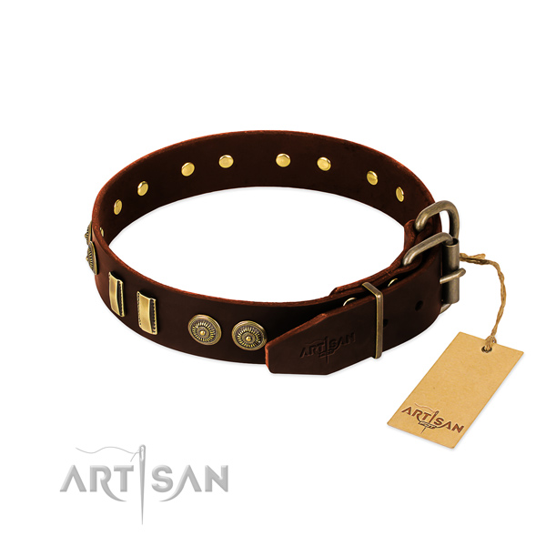 Corrosion proof studs on natural leather dog collar for your four-legged friend
