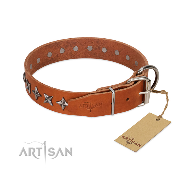 Everyday walking decorated dog collar of best quality natural leather