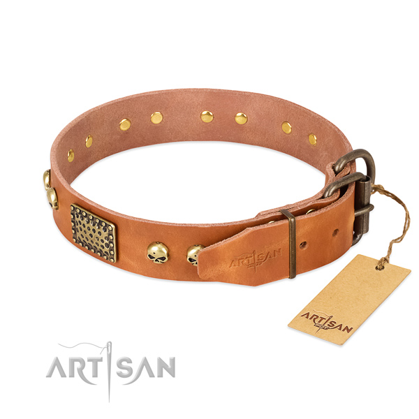 Reliable hardware on daily walking dog collar