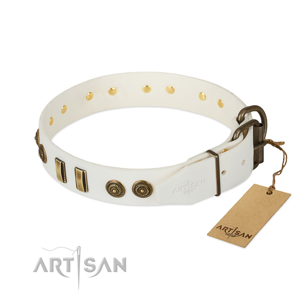 Corrosion resistant traditional buckle on genuine leather dog collar for your doggie