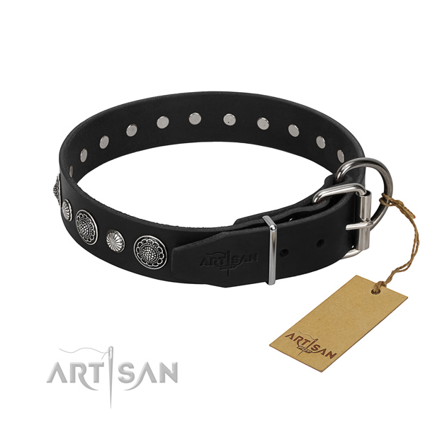 Best quality leather dog collar with remarkable studs