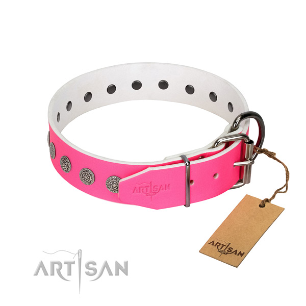Significant adornments on leather collar for walking your dog
