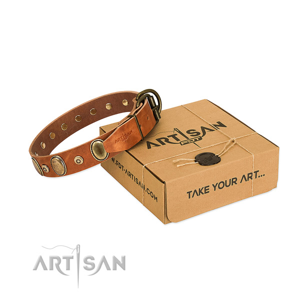 Gentle to touch full grain leather collar crafted for your four-legged friend