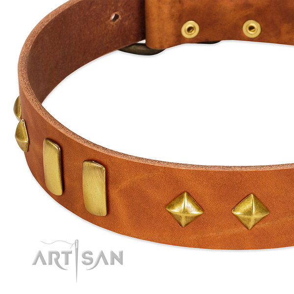 Fancy walking genuine leather dog collar with stunning decorations