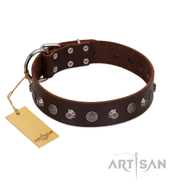 Handcrafted full grain natural leather dog collar