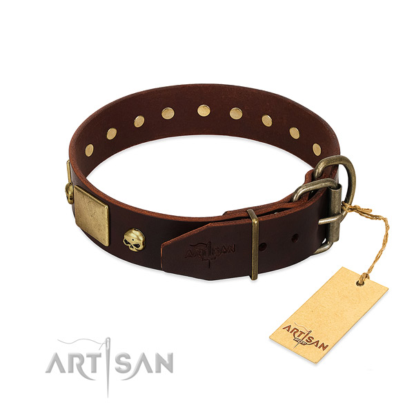 Best quality full grain leather dog collar with rust resistant decorations