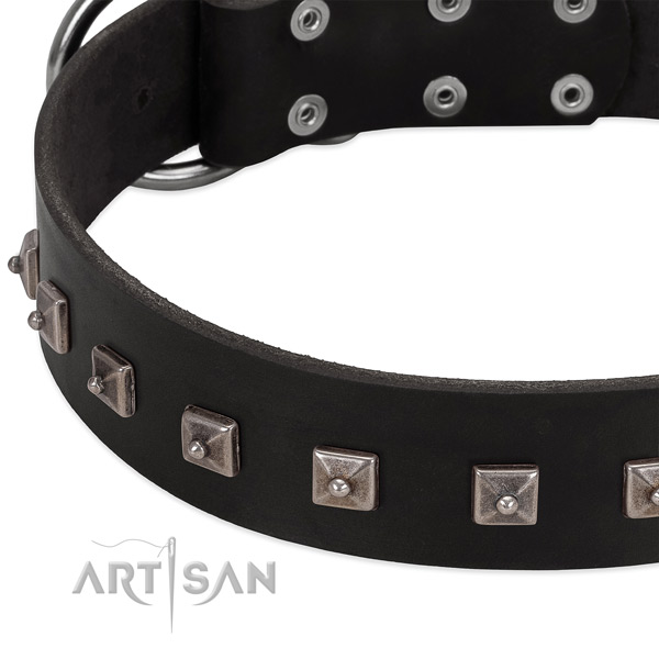 Quality genuine leather collar with studs for your canine