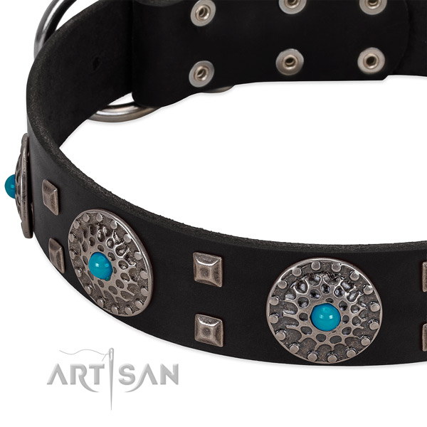 Soft to touch full grain genuine leather dog collar with exceptional adornments
