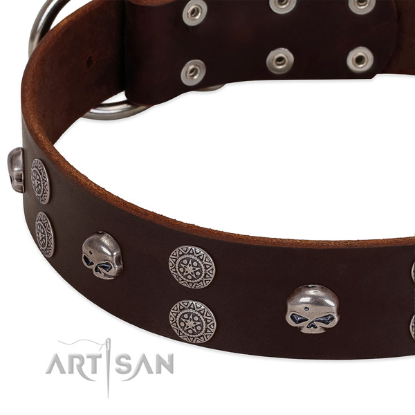 Soft to touch natural leather dog collar with inimitable decorations