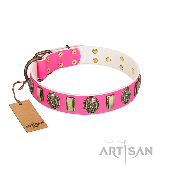 Corrosion resistant fittings on full grain natural leather dog collar for your canine