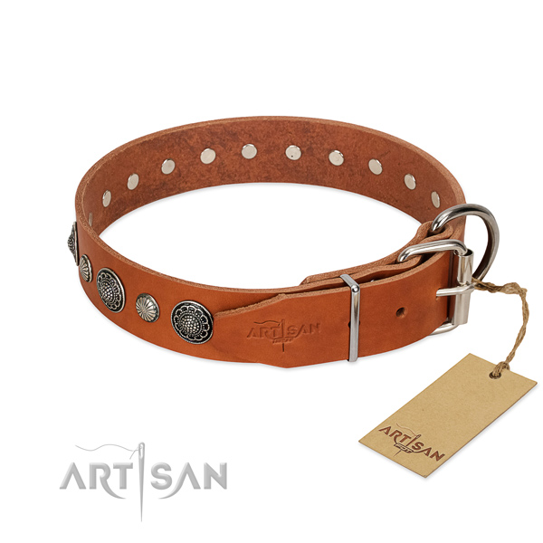 Quality full grain leather dog collar with rust-proof fittings