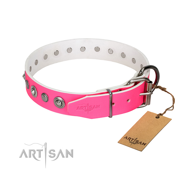 Fine quality natural leather dog collar with exceptional adornments