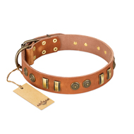 """Natural Beauty"" FDT Artisan Tan Leather Pitbull Collar with Old Bronze-like Circles and Plates"