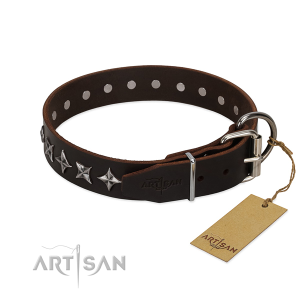 Daily walking embellished dog collar of high quality full grain genuine leather