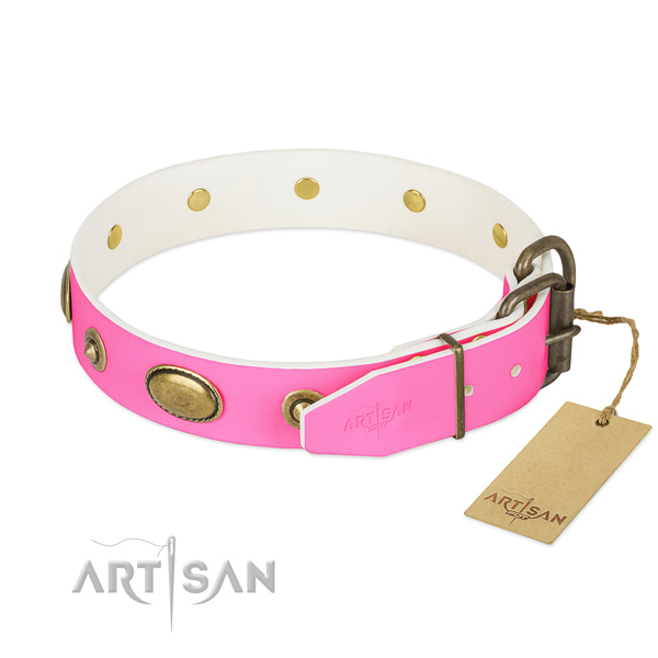 Strong decorations on full grain leather dog collar for your four-legged friend
