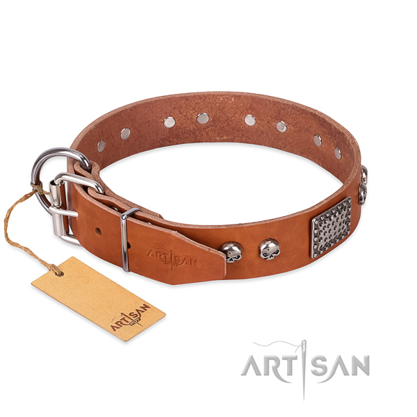 Rust resistant hardware on comfy wearing dog collar