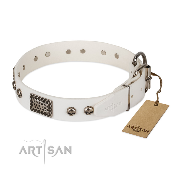 Strong hardware on handy use dog collar