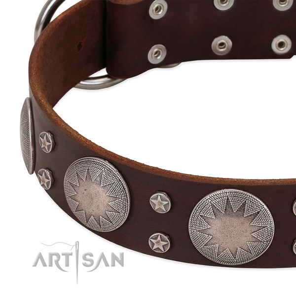 Soft to touch leather dog collar with decorations for your lovely canine