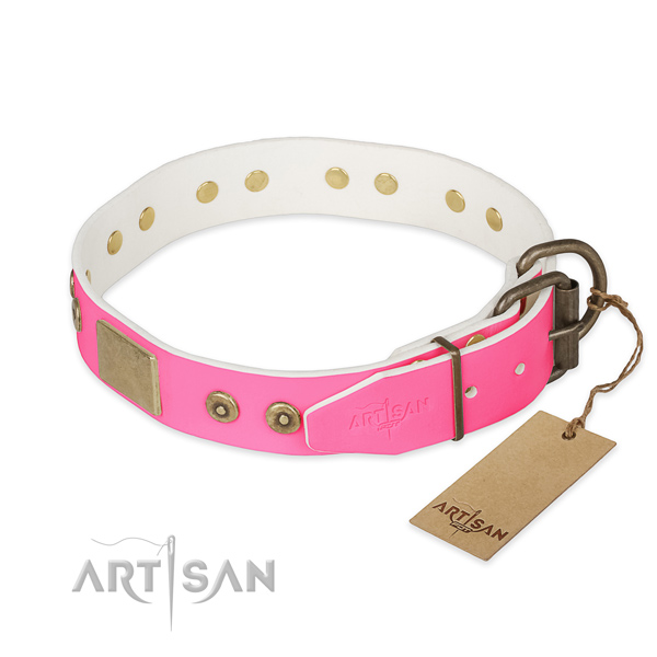 Strong adornments on walking dog collar
