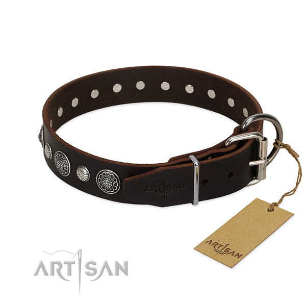 Top notch leather dog collar with designer embellishments