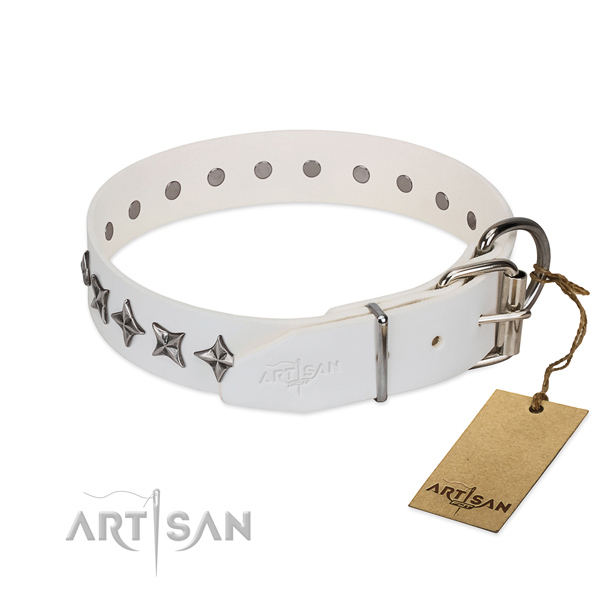 Walking embellished dog collar of top notch full grain natural leather