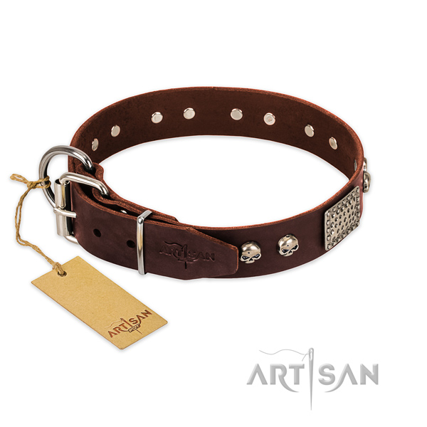 Corrosion resistant adornments on walking dog collar