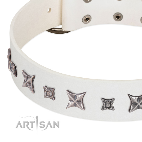 Inimitable full grain leather collar for your lovely four-legged friend