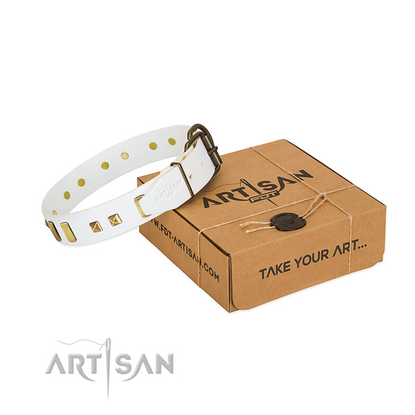 High quality full grain leather dog collar with decorations for stylish walking
