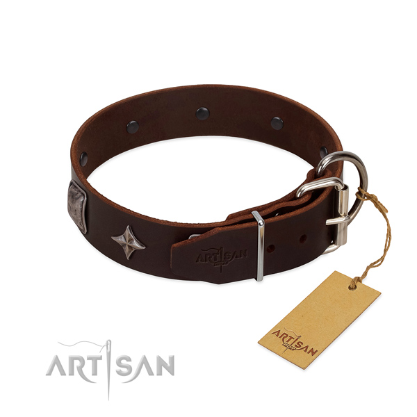 Quality full grain natural leather dog collar with unique decorations