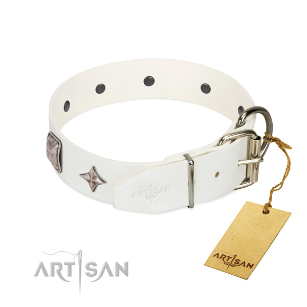 Top rate full grain genuine leather dog collar with stunning decorations