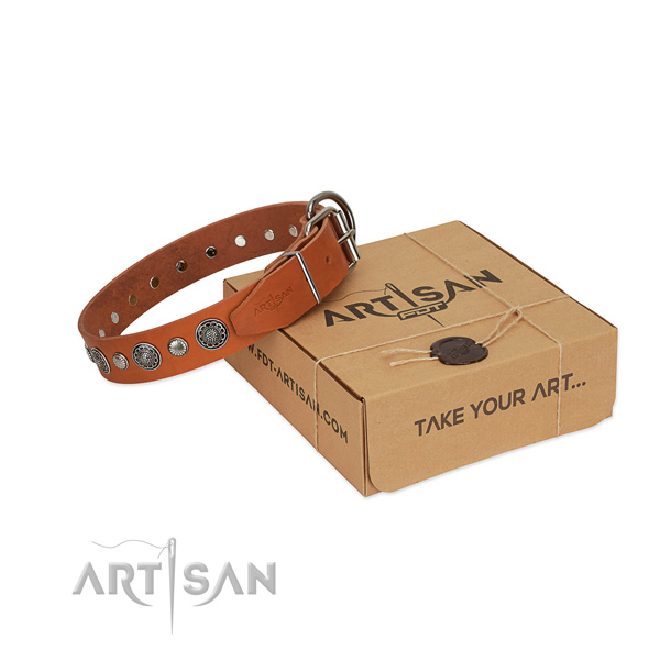 High quality full grain natural leather dog collar with awesome adornments