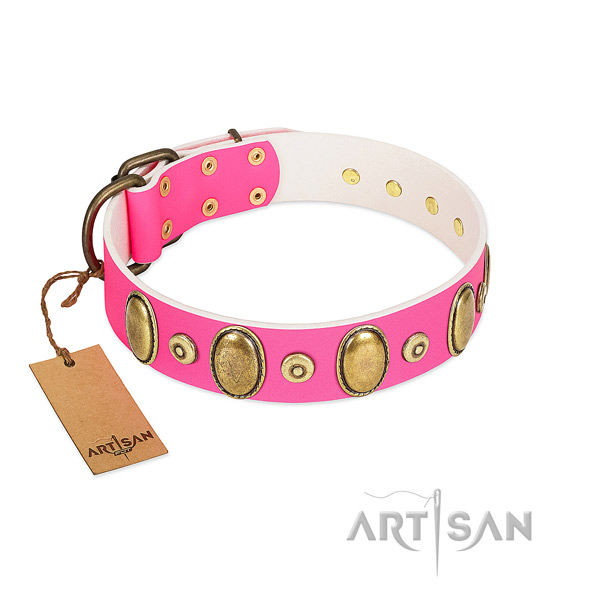 Top notch genuine leather collar with rust-proof embellishments for your pet